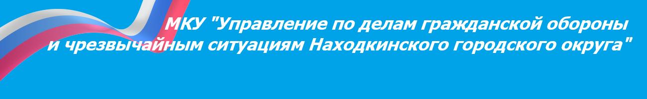 """МКУ """"Управление по делам ГО и ЧС НГО"""""""